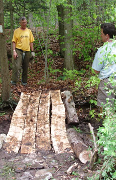 Maintaining the Finger Lakes Trail