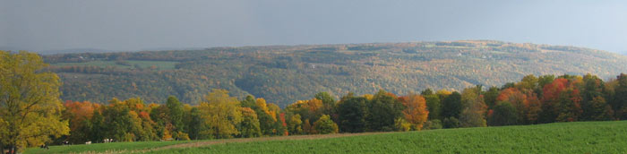 Distant view of Lick Brook gorge - Photo: R. Hopkins