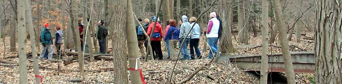 Walk, Look, and Learn hike in Cornell Plantations - Photo: R. Hopkins