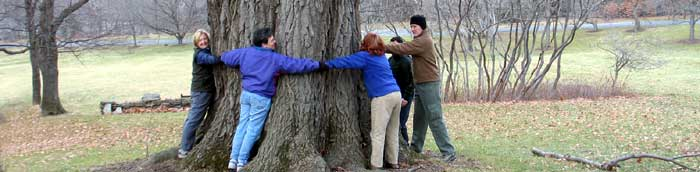 CTC tree huggers - Photo: R. Hopkins